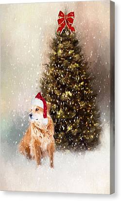 A Retriever Kind Of Christmas Canvas Print by Darren Fisher