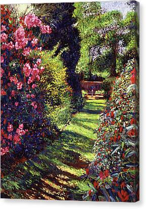 A Rhododendron Stroll Canvas Print