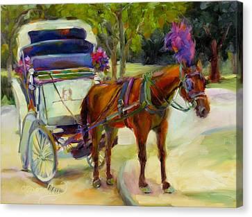 A Ride Through Central Park Canvas Print by Chris Brandley