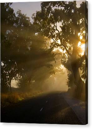 Sunburst Canvas Print - A Road Less Traveled by Mike  Dawson