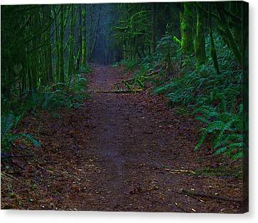 A Road Less Traveled Canvas Print by Steve Battle