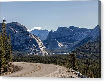 Canvas Print featuring the photograph A Road To Follow by Everet Regal