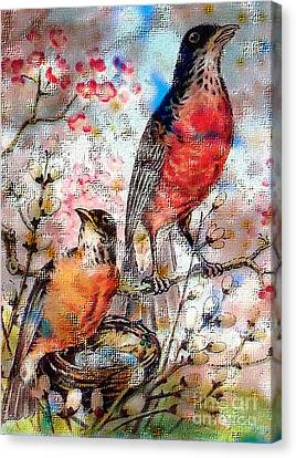 A Robin Red Breast Spring Canvas Print