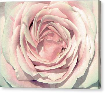 Canvas Print featuring the digital art A Rose Is A Rose by Margaret Hormann Bfa
