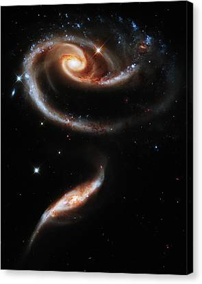A Rose Made Of Galaxies Canvas Print by Mark Kiver