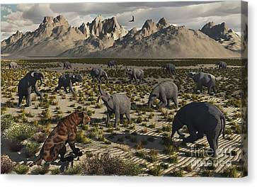 A Sabre-toothed Tiger Stalks A Herd Canvas Print by Mark Stevenson
