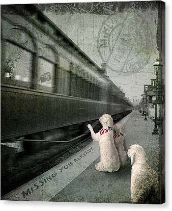 A Sad Goodbye Canvas Print by Suni Roveto