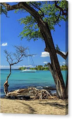 A Sailboat In Anaehoomalu Bay Canvas Print by James Eddy