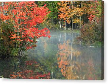 A Seat To Watch Autumn Canvas Print