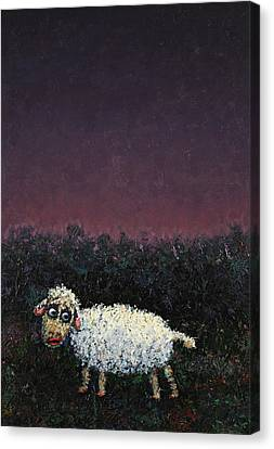 A Sheep In The Dark Canvas Print by James W Johnson