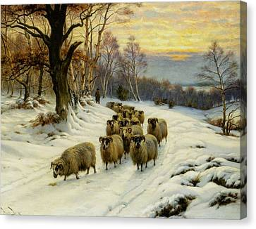 A Shepherd And His Flock  Canvas Print by MotionAge Designs