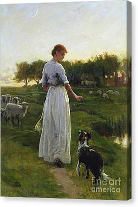 A Shepherdess With Her Dog And Flock In A Moonlit Meadow Canvas Print by George Faulkner Wetherbee