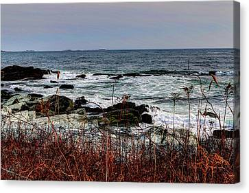 A Shoreline In New England Canvas Print by Tom Prendergast