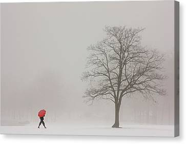 A Shortcut Through The Snow Canvas Print by Tom York Images