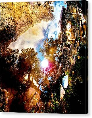A Show Of The Way Canvas Print