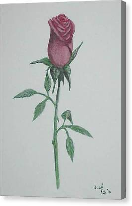 A Single Red Rose Canvas Print by Hilda and Jose Garrancho