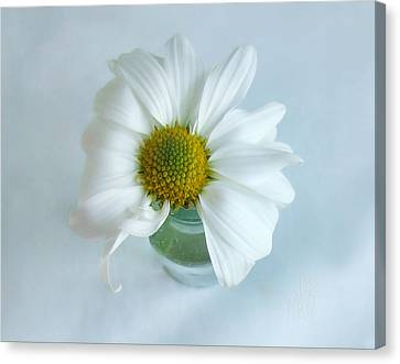 A Small Pleasure Canvas Print by Louise Kumpf