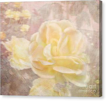 A Softer Rose Canvas Print by Victoria Harrington