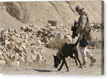 A Soldier And His Dog Search An Area Canvas Print by Stocktrek Images