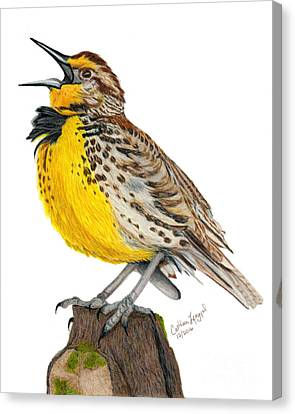 Meadowlark Canvas Print - A Solitary Song by Cathleen Lengyel