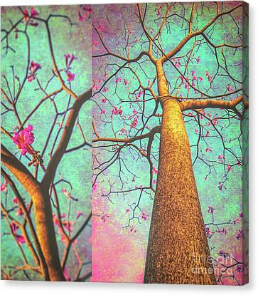 A Song Of November Canvas Print
