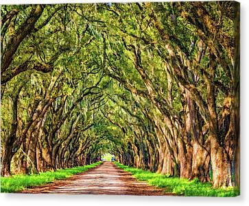 Evergreen Plantation Canvas Print - A Southern Lane 2 - Paint by Steve Harrington