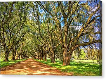 Evergreen Plantation Canvas Print - A Southern Lane 3 - Paint by Steve Harrington