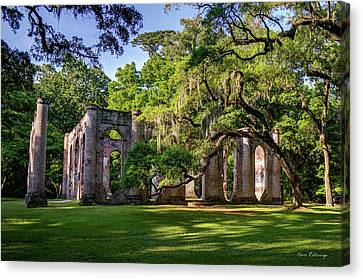 A Special Place Old Sheldon Church Ruins Canvas Print by Reid Callaway