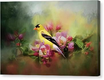 A Splash Of Joy Bird Art Canvas Print