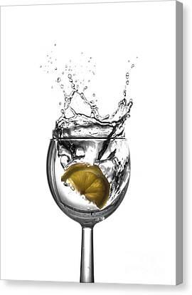A Splash Of Lemon Canvas Print