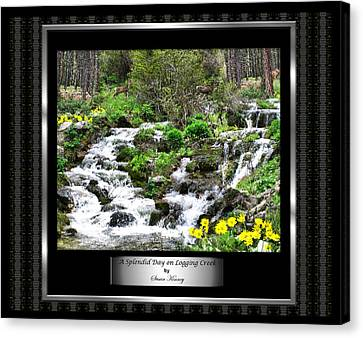 Canvas Print featuring the photograph A Splendid Day On Logging Creek by Susan Kinney