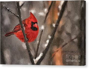 A Spot Of Color Canvas Print by Lois Bryan