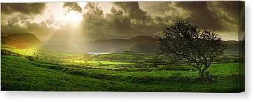 A Spot Of Sunshine Canvas Print