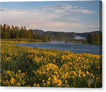 Splendor Canvas Print - A Spring Morning by Leland D Howard