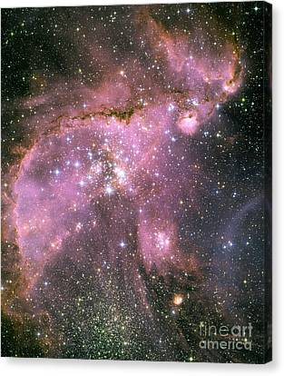 A Star-forming Region In The Small Canvas Print