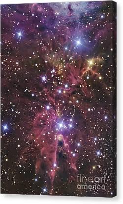 Monoceros Canvas Print - A Stellar Nursery Located Towards by R Jay GaBany