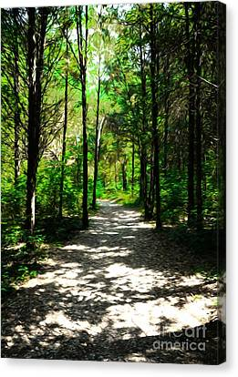 A Straight And Narrow Path Canvas Print by Mel Steinhauer
