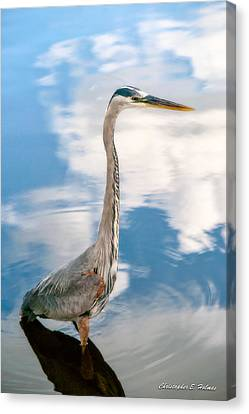 Canvas Print featuring the photograph A Stroll Among The Clouds by Christopher Holmes