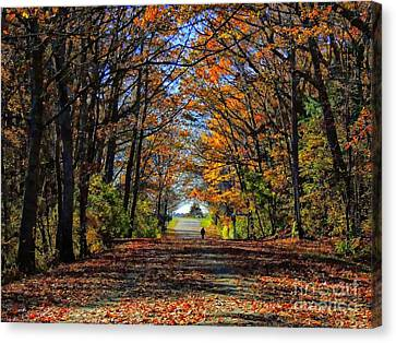 A Stroll Through Autumn Colors Canvas Print