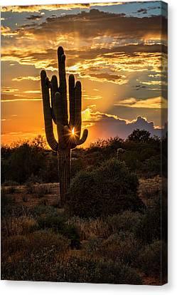 A Summer Desert Evening  Canvas Print