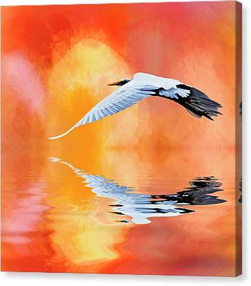 A Sunny Morning Canvas Print by Cyndy Doty