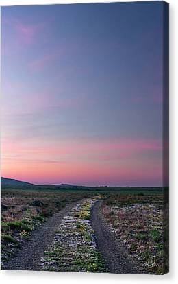 Canvas Print featuring the photograph A Sunrise Path by Leland D Howard