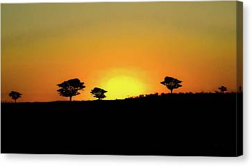 A Sunset In Namibia Canvas Print by Ernie Echols