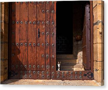 A Tabby Cat In The Doorway Canvas Print by Panoramic Images
