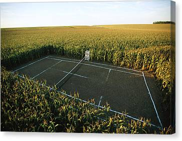 A Tennis Court Carved From A Corn Field Canvas Print by Joel Sartore