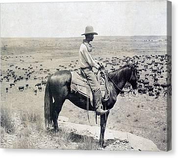 A Texas Cowboy On Horseback On A Knoll Canvas Print by Everett