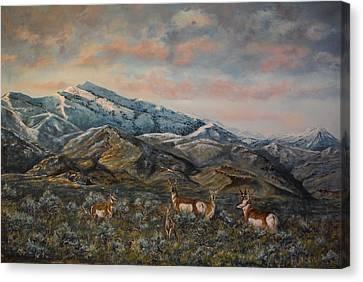 Pronghorn Antelope Canvas Print - A Time Of Plenty by Dwayne Moates
