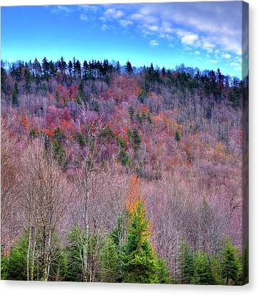 Canvas Print featuring the photograph A Touch Of Autumn by David Patterson
