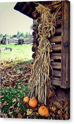 A Touch Of October Canvas Print by Jan Amiss Photography