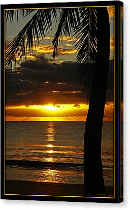 A Touch Of Paradise Canvas Print